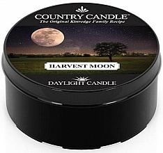 Profumi e cosmetici Candela da tè - Country Candle Harvest Moon Daylight