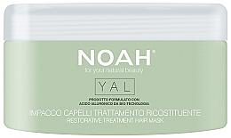 Profumi e cosmetici Maschera capelli rigenerante all'acido ialuronico - Noah