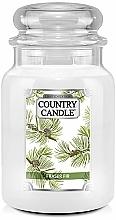Profumi e cosmetici Candela profumata - Country Candle Fraser Fir