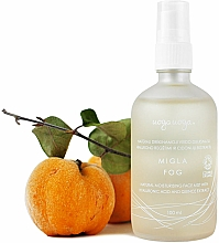 Profumi e cosmetici Nebbia viso idratante con acido ialuronico ed estratto di mela cotogna - Uoga Uoga