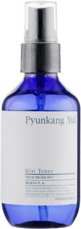 Tonico-spray con estratto di copto - Pyunkang Yul Mist Toner
