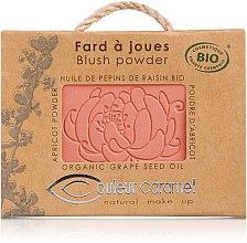 Profumi e cosmetici Blush minerale - Couleur Caramel Blush Powder