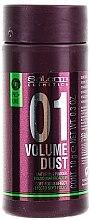 Profumi e cosmetici Polvere per dare volume e densità ai capelli - Salerm Pro Line Volume Dust 01 Mattifying Powder