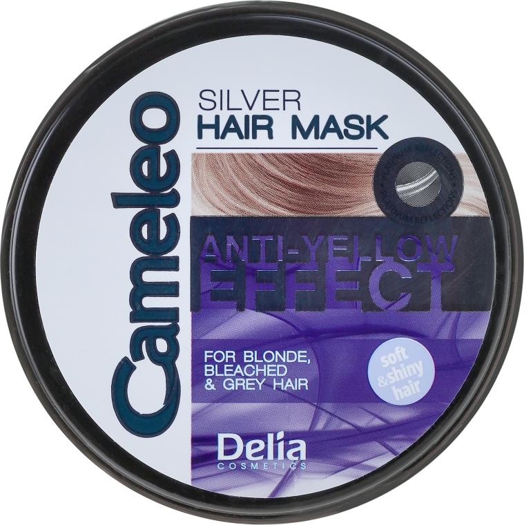 Maschera antigiallo per capelli biondi e decolorati - Delia Cameleo Silver Hair Mask