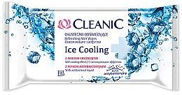 Profumi e cosmetici Salviette rinfrescanti, 15 pz - Cleanic Ice Cooling Wipes