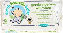 Profumi e cosmetici Salviette detergenti - Earth Friendly Baby Aloe Vera Wet Wipes
