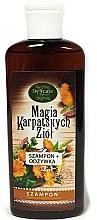 Profumi e cosmetici Shampoo per capelli secchi - Delicate Organic Magic Carpathian Herbs Shampoo For Dry Hair