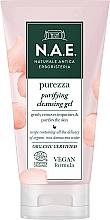 Profumi e cosmetici Gel detergente viso - N.A.E. Purezza Purifying Cleansing Gel
