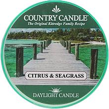 Profumi e cosmetici Candela da tè - Country Candle Citrus & Seagrass Daylight