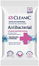 Profumi e cosmetici Salviette antibatteriche, 24 pz - Cleanic Antibacterial Wipes
