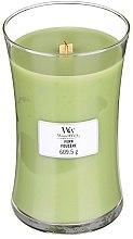 Profumi e cosmetici Candela profumata in bicchiere - WoodWick Hourglass Candle Fern