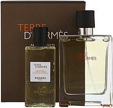 Profumi e cosmetici Hermes Terre dHermes - Set (edt/100ml + sh/g/80ml)