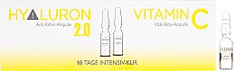 Profumi e cosmetici Fiale facciali - Alcina Hyaluron 2.0 & Vitamin C Ampulle