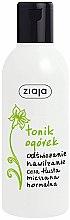 Profumi e cosmetici Tonico rinfrescante idratante per pelli grasse, miste e normali - Ziaja Facial Tonic