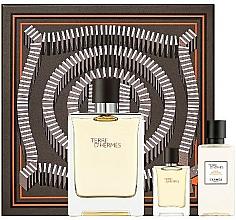 Profumi e cosmetici Hermes Terre D'Hermes - Set (edt/100 ml + ash/40 ml + edt/5 ml)
