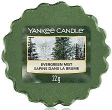 Profumi e cosmetici Cera aromatica - Yankee Candle Evergreen Mist Wax Melts