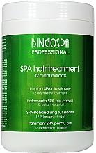 """Profumi e cosmetici Trattamento per capelli """"12 estratti vegetali"""" - BingoSpa Spa Treatment For Hair 12 Plant Extracts"""
