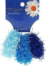 Profumi e cosmetici Elastici per capelli, 3 pz, blu e azzurro - Top Choice