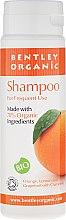 Profumi e cosmetici Shampoo quotidiano - Bentley Organic Shampoo For Frequent Use