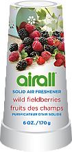 Profumi e cosmetici Deodorante per ambienti - Airall Air Freshener Solid Wild Berries