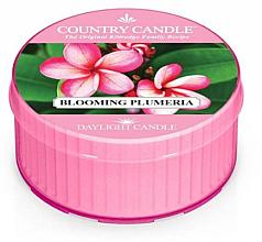 Profumi e cosmetici Candela profumata - Kringle Candle Blooming Plumeria