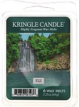 Profumi e cosmetici Cera per lampada aromatica - Country Candle Fiji Wax Melts