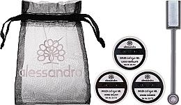 Profumi e cosmetici Set - Alessandro International Cat Eye Set (gel/5ml + magnet + bag)