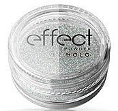 Profumi e cosmetici Polvere glitter per unghie - Ronney Professional Holo Effect Nail Art Powder