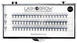 Profumi e cosmetici Ciglia finte a ciuffetti - Lash Brown Premium Flare Silk Lashes Spectacular Long