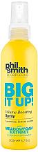 Profumi e cosmetici Spray volumizzante - Phil Smith Be Gorgeous Big It Up Volume Boosting Spray