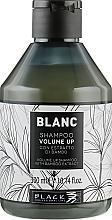 Shampoo per volume dei capelli - Black Professional Line Blanc Volume Up Shampoo — foto N1