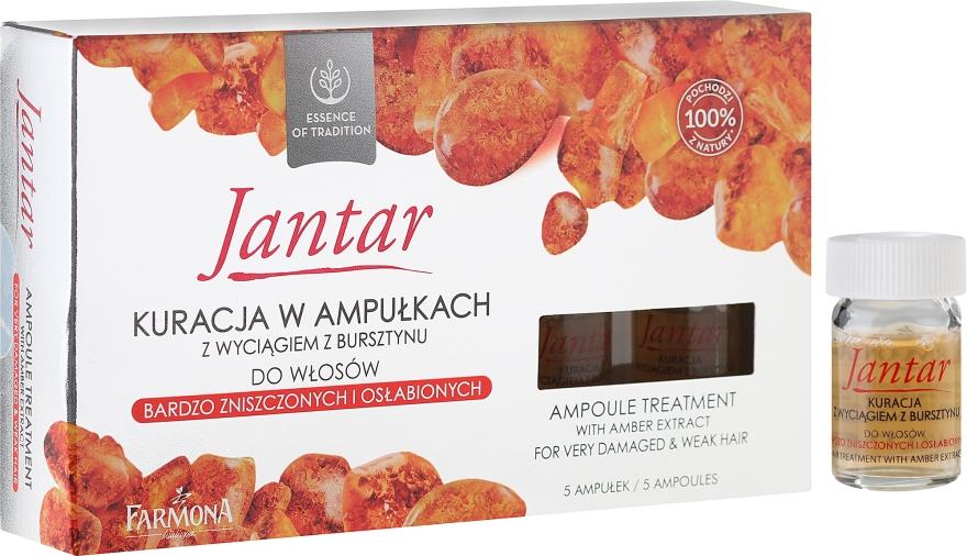 Rimedio per capelli molto danneggiati - Farmona Jantar Hair Treatment In Ampoules