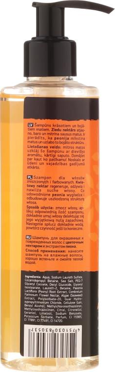 """Shampoo per capelli tinti e danegiati """"Oops…I did it again!"""" - Beauty Jar Shampoo For Colour-Treated And Damaged Hair — foto N5"""