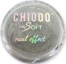 Profumi e cosmetici Polvere olografico per nail design - Chiodo Pro Soft