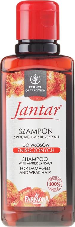 Shampoo idratante protettivo con estratto di ambra - Farmona Jantar Shampoo