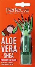 """Profumi e cosmetici Balsamo labbra rigenerante """"Aloe vera e burro di karité"""" - Perfecta Aloe Vera + Shea Lip Balm"""