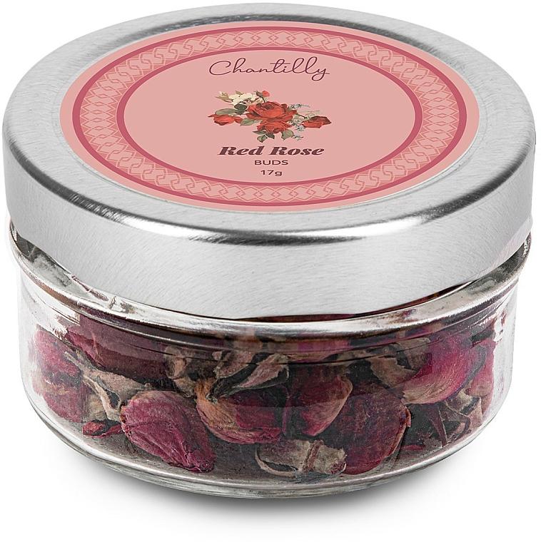 Boccioli di rosa rossa - Chantilly Red Rose Buds — foto N1