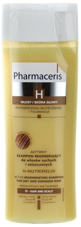 Shampoo rigenerante per capelli secchi - Pharmaceris H-Nutrimelin Active Regenerating Shampoo