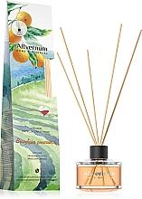 """Profumi e cosmetici Aromadiffusore """"Arancia brasiliana"""" con bastoncini - Allverne Home&Essences Diffuser"""