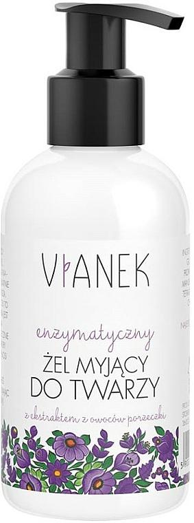 Gel detergente viso enzimatico - Vianek Purple Cleansing Gel