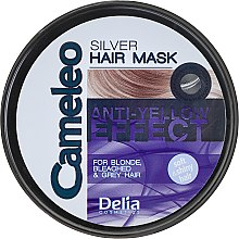 Profumi e cosmetici Maschera antigiallo per capelli biondi e decolorati - Delia Cameleo Silver Hair Mask
