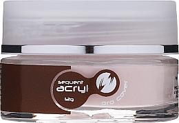 Profumi e cosmetici Smalto acrilico, 12 g - Silcare Sequent Acryl