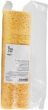 Profumi e cosmetici Spugna struccante, cellulosa - Peggy Sage Cellulose Sponge