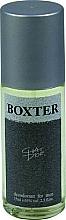 Profumi e cosmetici Chat D'or Boxter - Deodorante-spray