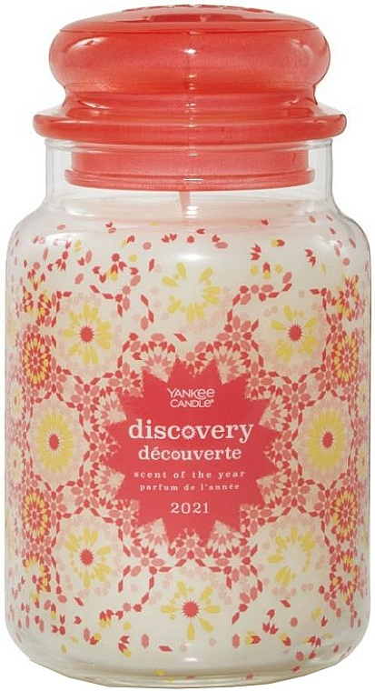 Candela profumata in vetro - Yankee Candle Discovery Scent Of The Years 2021