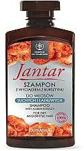 Profumi e cosmetici Shampoo per capelli secchi e sfibrati, con estratto di ambra - Farmona Jantar Moisturizing Shampoo