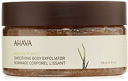 Profumi e cosmetici Esfoliante corpo - Ahava Deadsea Plants Smoothing Body Exfoliator