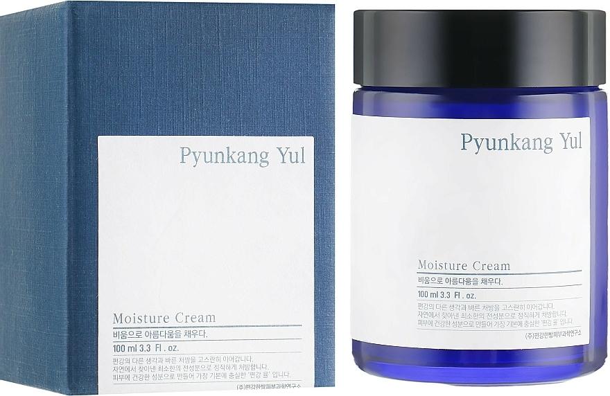 Crema idratante - Pyunkang Yul Moisture Cream