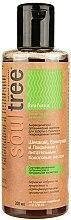 Profumi e cosmetici Shampoo organico con liquirizia, shikakai e olio di cocco nutriente - Biofarma SoulTree