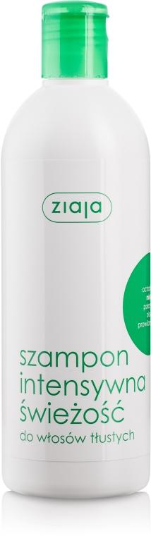 Shampoo rinfrescante per capelli grassi con estratto di menta - Ziaja Shampoo